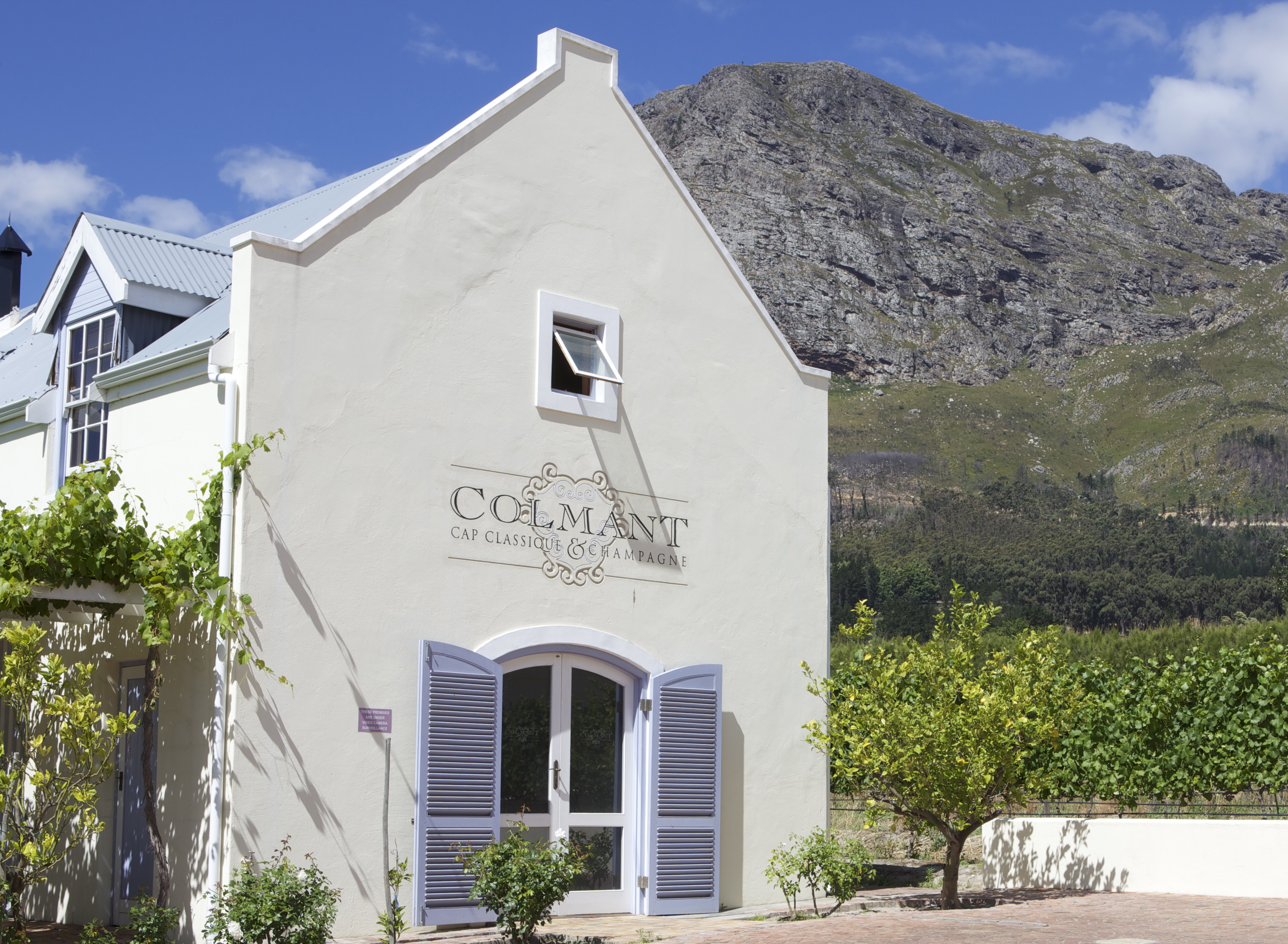 The Winery in Franschhoek