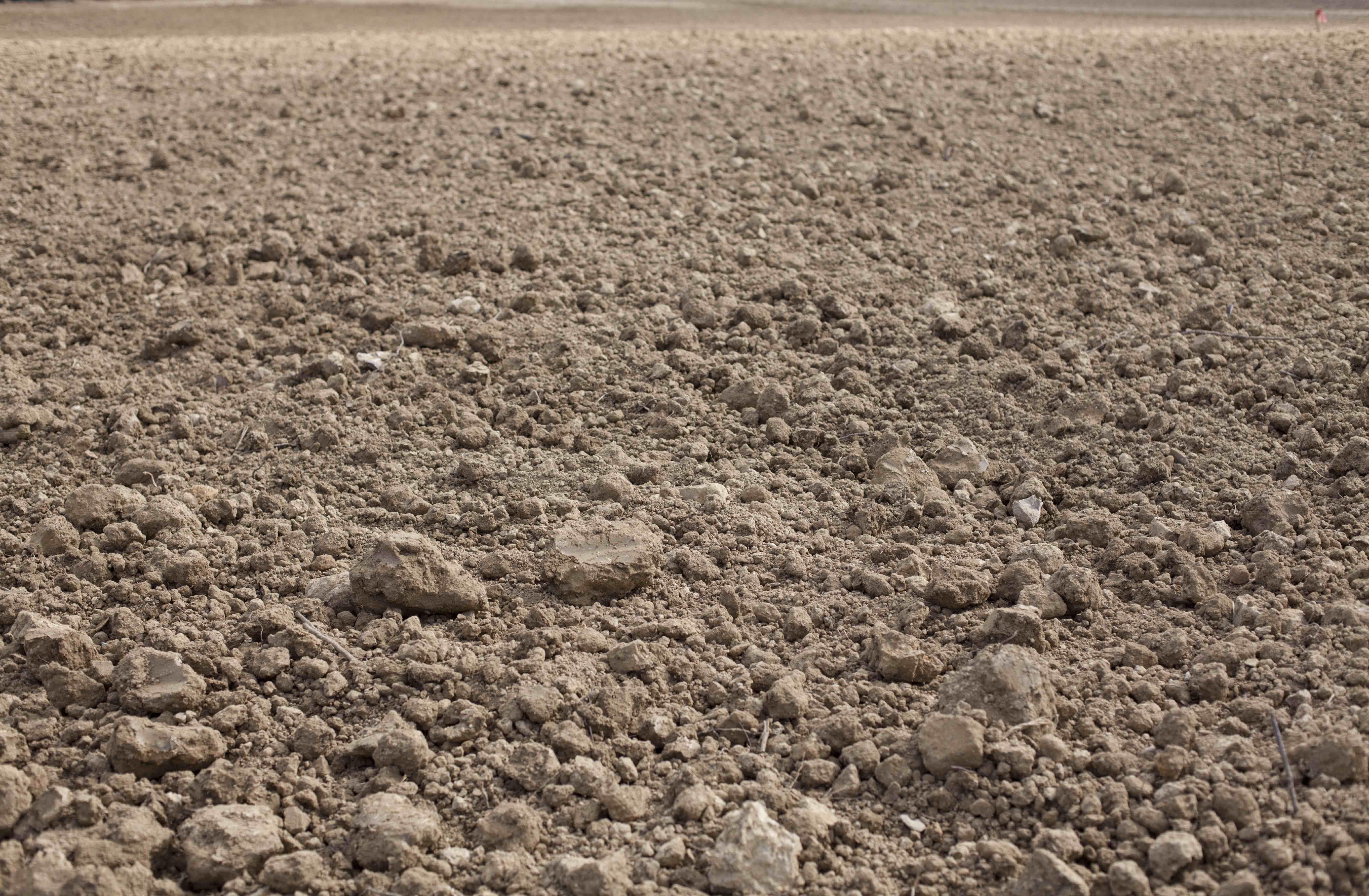 Montornello's Soils