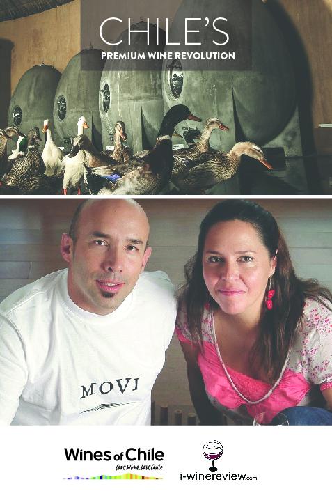 CHILE WINE REVOLUTION POSTS-02