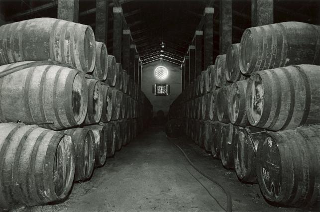 Cellars at Tío Perico