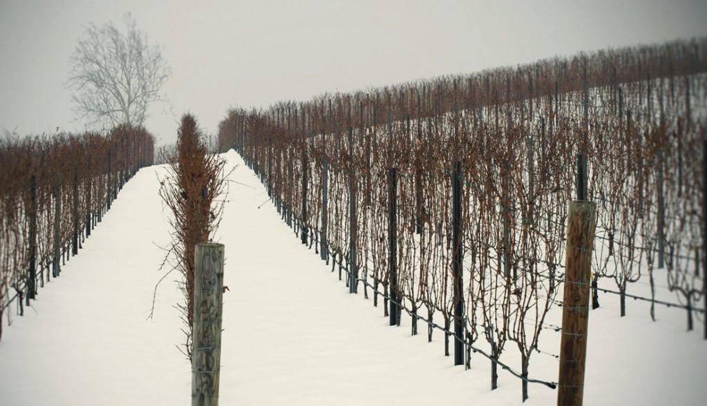 VA RdV Winter Snow