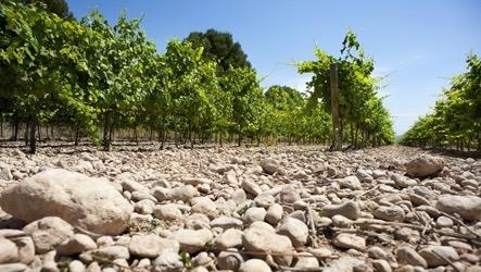Gravel Soils