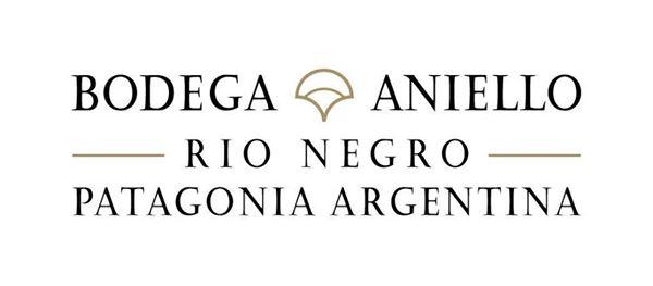 ART Aniello Logo