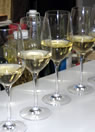 Glasses of white for tasting